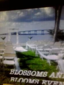 Private Ceremony Wedding Package, Blossoms and Blooms Events, Bushnell