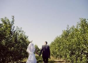 Wedding Ceremony (starting at $595), Crane Orchards, Fennville