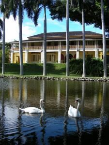 Bonnet House Museum And Gardens, Fort Lauderdale