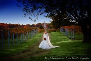Wedding and/or Reception reserving HRH Vineyards or Barn, Crown Winery LLC, Humboldt — Vineyard in October