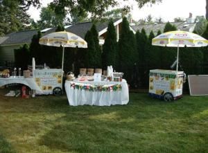 Ice Cream Packages start at $150, Party Hearty, LLC, Livonia