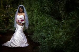 Wedding Photography with Digital Files on DVD and $100 Print Credit, Atascocita Photography, Humble