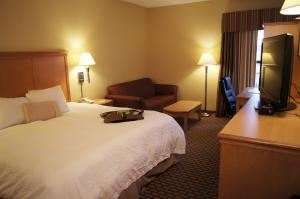 Hampton Inn Ames, Ames