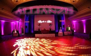 Premium Wedding Specials start at $900, Allianze Events, Austin