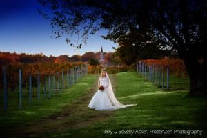Wedding and/or Reception reserving HRH Vineyards or Barn, Crown Winery LLC — Vineyard in October