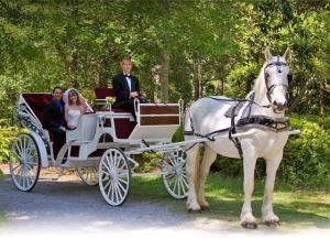 Horse Drawn Carriage & Wedding In The Park , The Metropolitan Room, Fayetteville