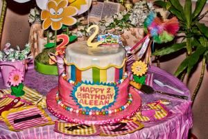 Children's Birthday Party 2-3 Hours, Michele O'Neal Photography and Videography, Whittier