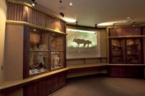 Discovery Room / Predators Exhibit, Oregon Zoo, Portland
