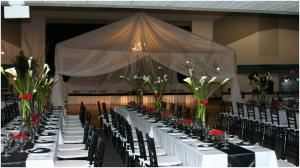 Outside Wedding Reception Package, Mary's Wedding & Party Planning, Winter Haven