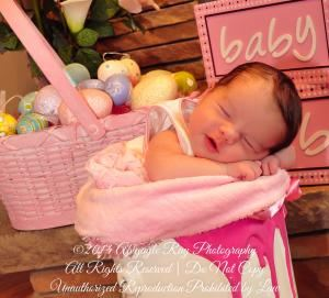 Maternity and Newborn Packages, Abigayle Ray Photography, Rotonda West