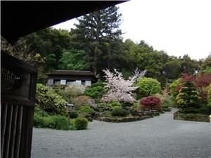 Garden, Hakone Estate and Gardens, Saratoga — View of the garden from the entry gate