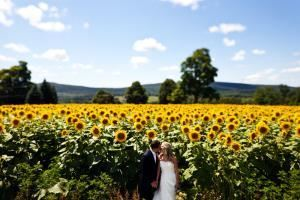 Ultimate Wedding Package, Interlaken Resort & Conference Center, Lakeville