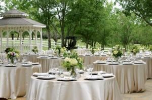 Silver Party Package, Chapel Creek Manor, Waxahachie
