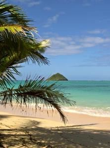 Enjoy a Day at the Beach in Hawaii