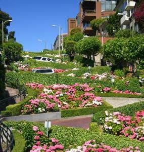 Lombard Street, the World's Crookedest Street