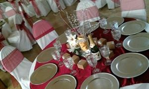 Entire Facility, Pioneer Event Center, Grand Prairie — We have 40 different colors of linens to offer. Give us a call to customize a package according to your party needs. Certified wedding/event planner on site. Mary Dominguez-Santini 972-480-7501