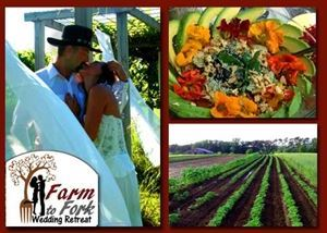 Organic Farm to Fork Retreat - Affordable Ecotourism Destination Wedding Venue! -