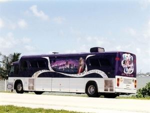 Ultimate Party Bus & Limousine