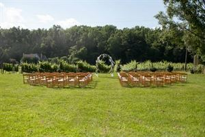 The Vineyards, First Colony Winery, Charlottesville — A wedding in the vineyard -- so romantic!