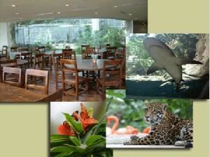 Cafe Maya, The Dallas World Aquarium, Dallas