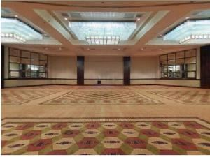 Grand Mesa Ballroom C, Hyatt Regency Tech Center - Denver, Denver — Grand Mesa Ballroom C