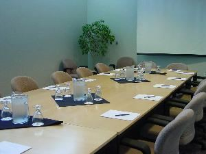Meeting Room 309, Washington University Medical Center/Eric P Newman Education Center, Saint Louis