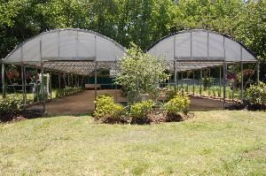 The Green House, Hunt Club Farm, Virginia Beach