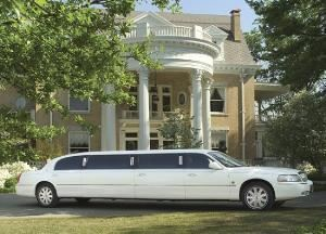 Doris Limousine Service, Punta Gorda — All vehicles are 2006 & 2007 lincoln towncars and 14 passenger express van. All chauffeurs are uniformed.