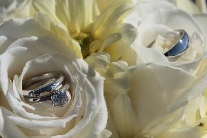 Norman J. Wilson Photography, Courtenay — Sample detail shot - Wedding rings in bouquet.