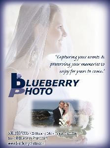 Blueberry Photo, Mendon