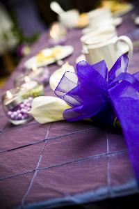 All Occasion Celebrations, Mauldin — Fuller-Gregory wedding. Color scheme: Pistachio and Royal Purple