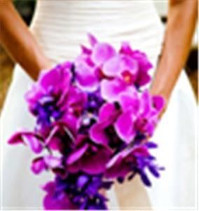 Event Jolie - Wedding & Event Planning, Palm Beach Gardens
