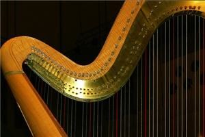 Harp Music For Any Occasion, Houston