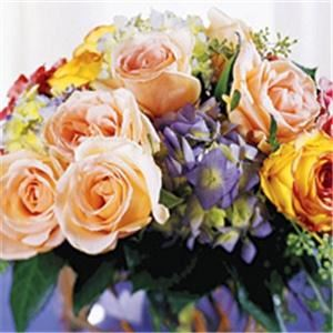 Phillip's Flowers & Gifts - Chicago & Suburbs, Westmont