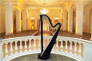 Dania M Lane Harpist Alpharetta, Alpharetta — Dania's harp looks lovely at the Biltmore Hotel in Atlanta.