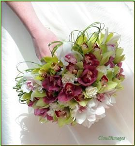 Artistry in Bloom Floral Design Studio, Victoria — Bridal bouquet of white,green, and burgundy cymbidium orchids with white spray roses and bear grass loops.