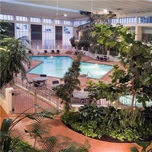 Atrium, Ramada Oasis Hotel & Convention Center, Springfield