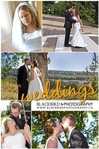 Blackbird Photography, Edmonton
