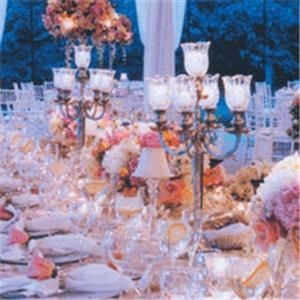 Platinum Planner - Sumter, Sumter — Platinum Planner is the finest boutique event consulting firm in SC offering unique Event Planning and VIP Service solutions to businesses and individuals. We specialize in corporate, special occasion, and nightlife event planning for groups of all sizes in the area and aim to eliminate all stress related to organizing any type of social or corporate function. Let us take care of you! Just tell us what you want to do, see, eat, and experience and we'll tailor a night, a week or weekend for your individual needs.