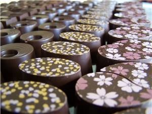 Coastal Mist fine chocolate, desserts & catering, Bandon — An array of breath taking chocolate awaits you!