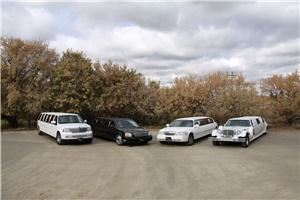 Ebel's Limousines & Event Decor, Medicine Hat