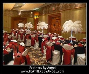 Feathers By Angel-Ostrich Feather Centerpieces - Miami, Miami — Feathers By Angel rent ostrich feather centerpieces for weddings and all events. We travel to all states, travel fee applies. We are full service: travel to your event location, set them up for you then remove them at the conclusion of your event. Visit our site at www.feathersbyangel.com
