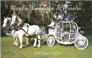 Ocala Carriage & Tours - Tampa, Tampa — Ocala Carriage & Tours 