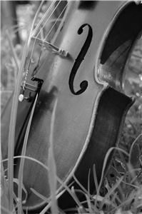 Jacksonville Strings, Jacksonville — Jacksonville Strings provides solo violin, string duo, string trio and string quartet services.