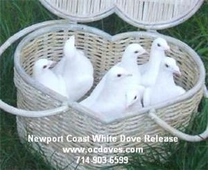 Newport Coast White Dove Release, Huntington Beach — Package One - 2 White Doves Released