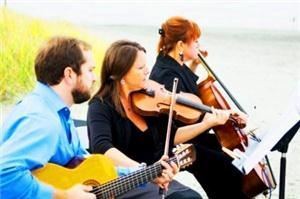 the Grace Note String Trio ~ Beautiful Ceremony Music ~ Violin, Cello, Harp, Flute & more, Dover — Our Grace Note Trio ~ with acoustic guitar