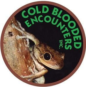 Cold Blooded - REPTILE ZOO!