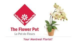 The Flower Pot - Gifts & Favors, Montreal