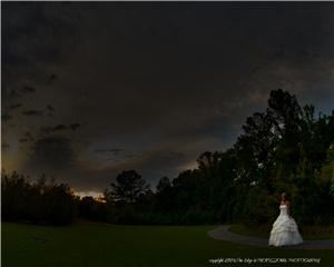 The Edge in PROFESSIONAL PHOTOGRAPHY, Jacksonville — A Bride walking in a meadow. A photograph that I hope portrays the romance of the moment.