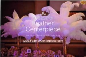 Feather Centerpieces, Merrick